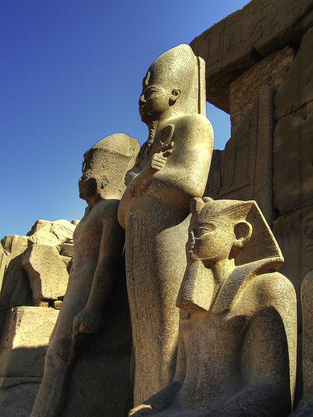 Amun - Steigenberger MS Minerva