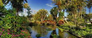 Hotel Hotel Botanico & The Oriental Spa Garden Garten
