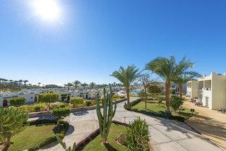 Hotel Reef Oasis Beach Resort Garten