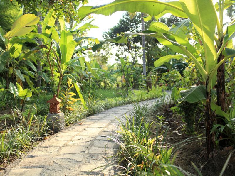 Ubad Retreat Garten