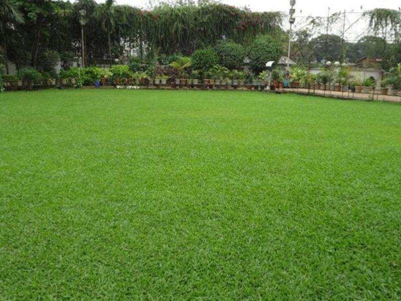 Suncity Residency Garten
