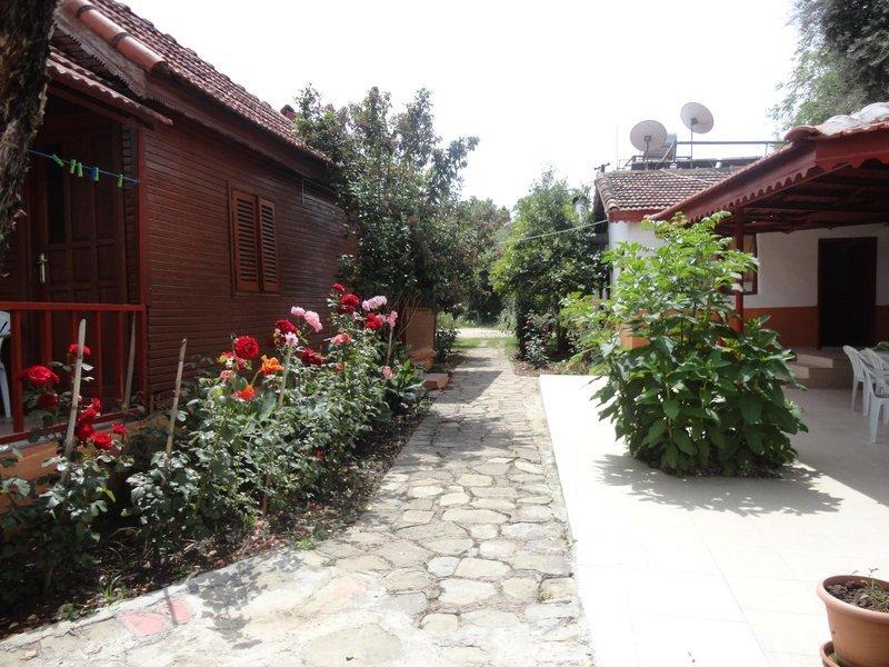 Toll Garten