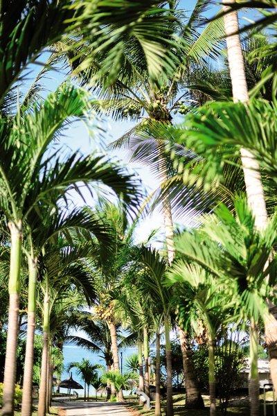 Veranda Palmar BeachGarten