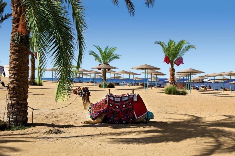 Three Corners Sunny Beach Resort Strand