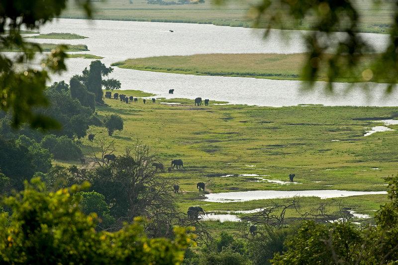 Chobe Chilwero Landschaft