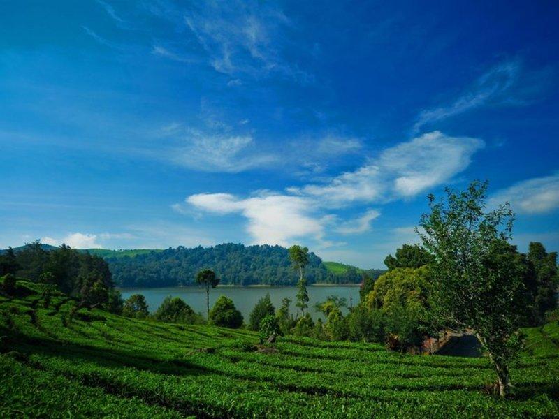 Sheraton Bandung Hotel & Towers Landschaft
