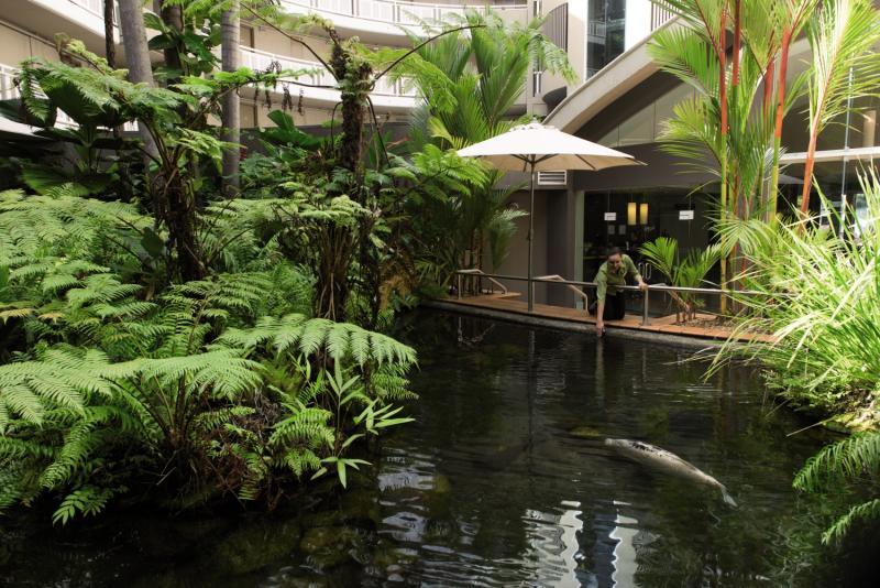 DoubleTree by Hilton Hotel Cairns Garten
