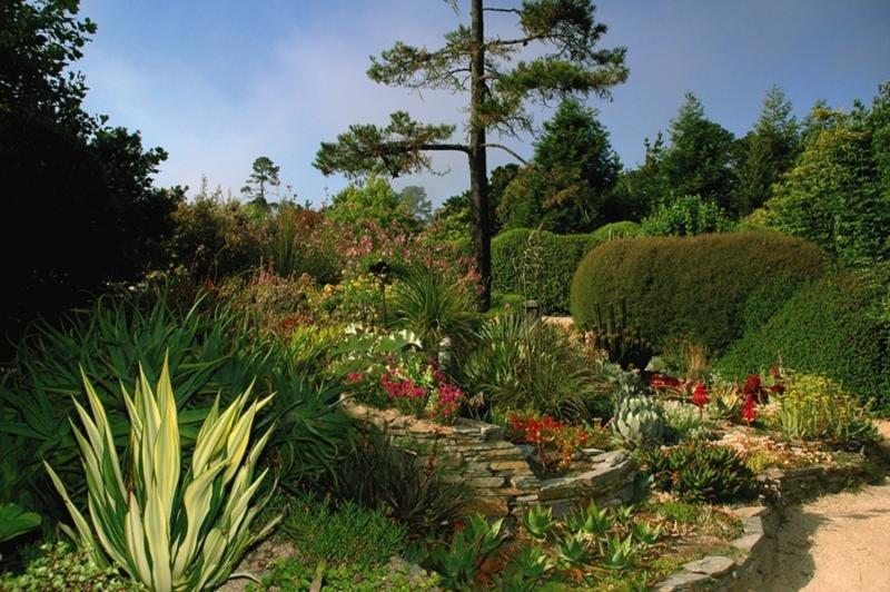Cambria Pines Lodge Garten