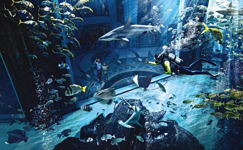 Atlantis - The Palm Lounge/Empfang